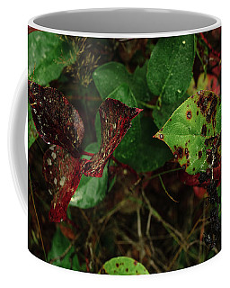 Season Color Coffee Mug