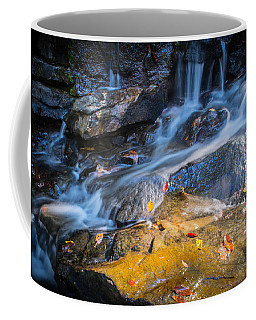 Seasons Collide Coffee Mug