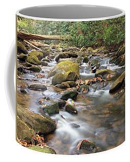 Secluded Coffee Mug