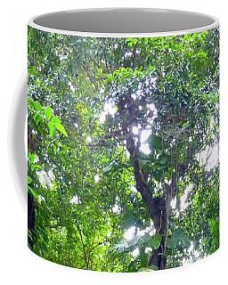 Coffee Mug featuring the photograph Secret Bridge In The Tropical Garden by Francesca Mackenney