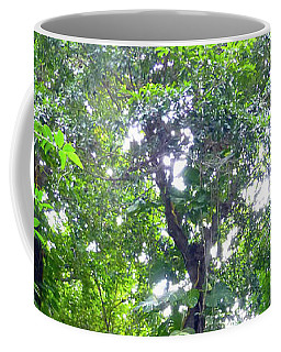 Secret Bridge In The Tropical Garden Coffee Mug