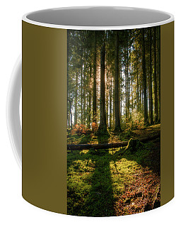 Coffee Mug featuring the photograph Secret Forest by Geoff Smith