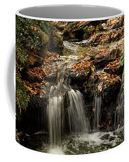 Coffee Mug featuring the photograph Secret Spot by Iris Greenwell