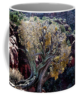 Sedona Tree #2 Coffee Mug
