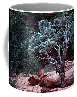 Sedona Tree #3 Coffee Mug