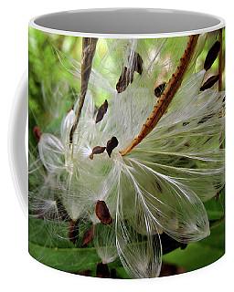 Seed Pods Coffee Mug