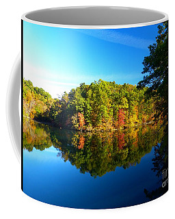 Seen From Kidds Schoolhouse Coffee Mug