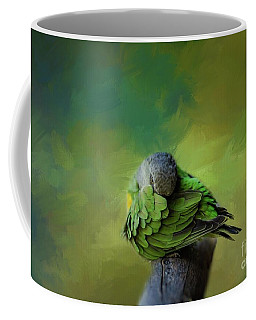 Senegal Parrot Coffee Mug