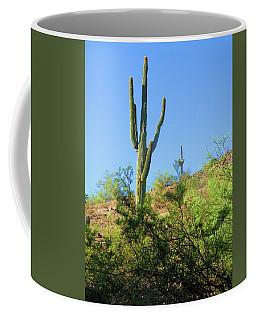 Senior And Junior Soak Up Sun Coffee Mug