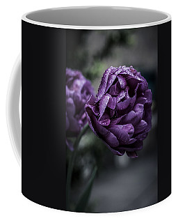 Sensational Dreams Coffee Mug