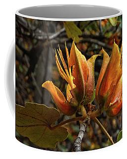 Sentries Coffee Mug