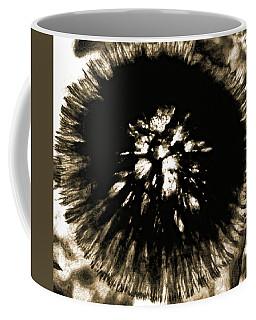 Sepia Dandelion Coffee Mug