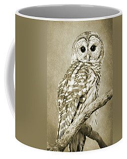 Sepia Owl Coffee Mug