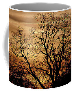 Sepia Sunset Coffee Mug by Michael Nowotny