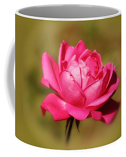 September Rose Up Close Coffee Mug