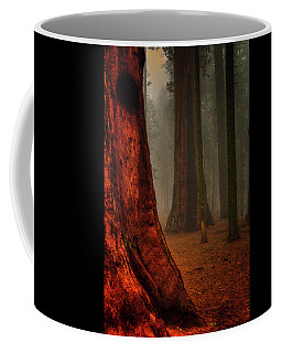 Sequoias In The Clouds Coffee Mug