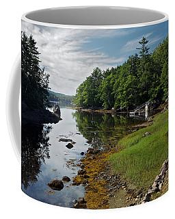 Serene Backyard Coffee Mug