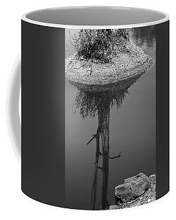 Coffee Mug featuring the photograph Serene Reflection, Nagzira, 2011 by Hitendra SINKAR