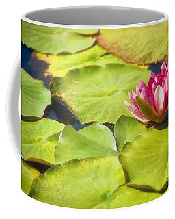 Serenity And Solitude Coffee Mug