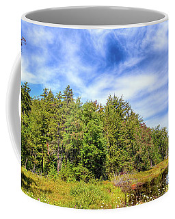 Coffee Mug featuring the photograph Serenity On Bald Mountain Pond by David Patterson