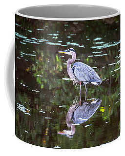 Coffee Mug featuring the photograph Serenity by Sally Sperry