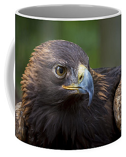 Serious Coffee Mug by Andrea Silies