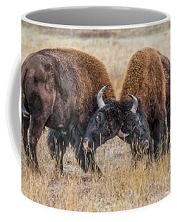 Serious Dominance Training Coffee Mug by Yeates Photography