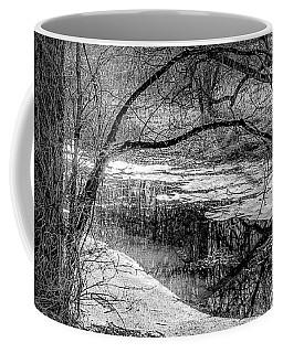 Set On Defrost Coffee Mug
