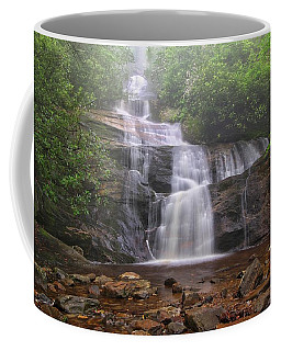 Setrock Creek Falls  Coffee Mug