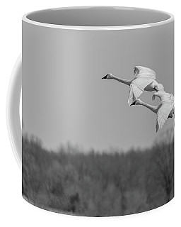 Coffee Mug featuring the photograph Setting Down 20176-1 by Thomas Young