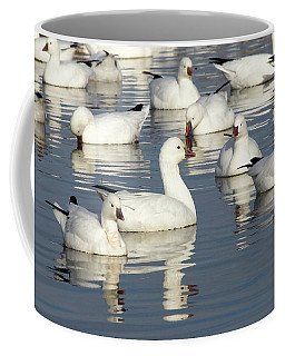 Several Geese A Swimming Coffee Mug