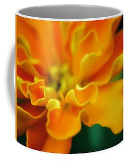 Coffee Mug featuring the photograph Shades Of Orange by Eduard Moldoveanu