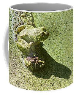 Shadow And Frog Coffee Mug