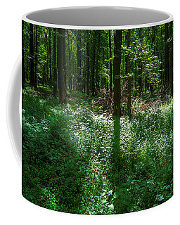 Shadow And Light In A Forest Coffee Mug