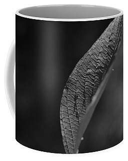 Shadow Of Day Coffee Mug