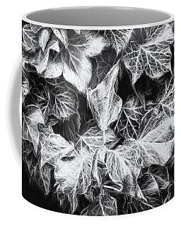 Coffee Mug featuring the photograph Shadows Of The Ivy 2 by Jaroslav Buna