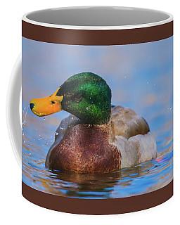Shake It Off Coffee Mug by Jeff at JSJ Photography
