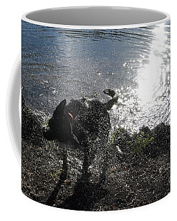 Coffee Mug featuring the photograph Shaking It Off by Cheryl McClure