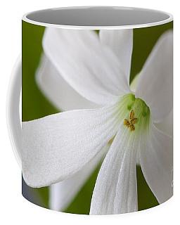 Shamrock Blossom Coffee Mug