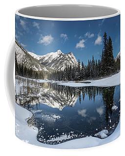 Shape Of Ice Coffee Mug