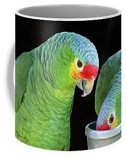 Shared Lunch Coffee Mug