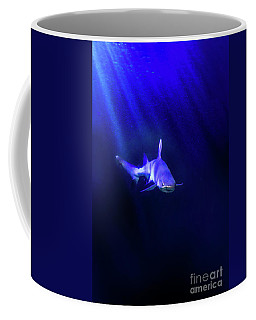 Coffee Mug featuring the photograph Shark by Jill Battaglia