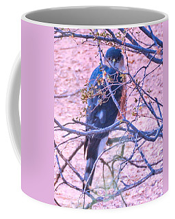 Sharp-shinned Hawk Hunting In The Desert 2 Coffee Mug