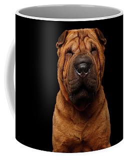 Coffee Mug featuring the photograph Sharpei Dog Isolated On Black Background by Sergey Taran