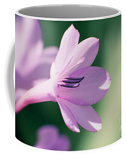 Coffee Mug featuring the photograph She Listens Like Spring by Linda Lees