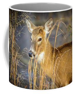 Shed.... Coffee Mug