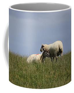 Sheep 4221 Coffee Mug
