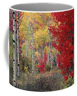 Sheep Canyon In Autumn Coffee Mug by Leland D Howard