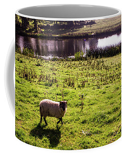 Sheep In Eniskillen Coffee Mug