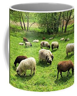 Sheep On Meadow Coffee Mug